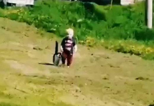 【ほっこり】幼児の散歩にぴったり付き合う猫が話題に「ボディーガードしてるw」