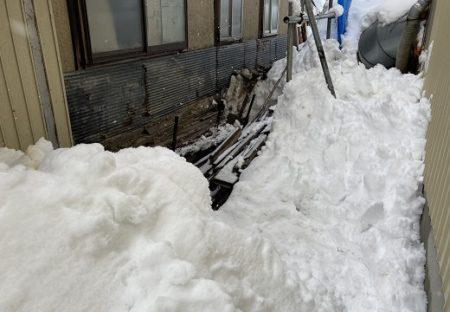 【泣いた】雪の中から聞こえる猫の声に気づいた女性、3時間掘りまくり子猫を救助!