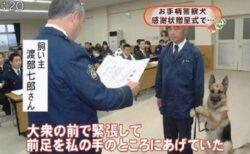 【w】表彰式に緊張してしまう警察犬が話題に(・∀・)
