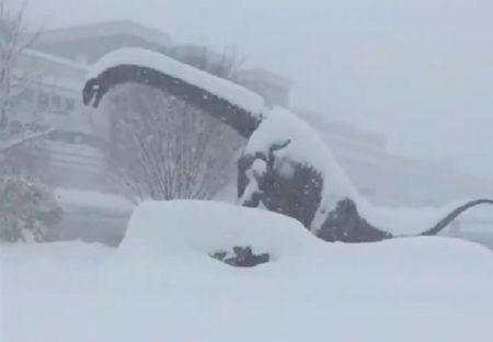 【動画】大雪の中で動く福井駅前の大恐竜達が話題に「氷河期かな・・」
