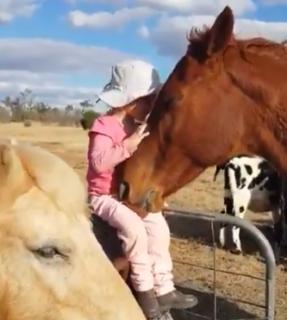 とっても仲良しな少女と馬、美しすぎるこの光景に外国人もほっこり