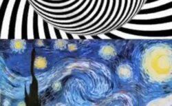 【驚愕】螺旋の動画を20秒凝視しすぐゴッホの絵を見ると・・「うわ!動いた!」