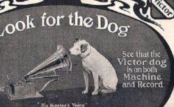 【w】ビクターのあの犬、想像とかなり違う動画が話題に「過激すぎるw」