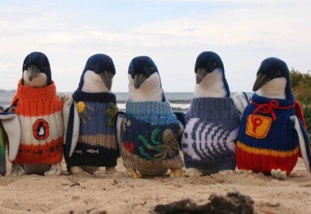 ペンギンのセーターを編むおじいちゃんと、セーターを着たペンギン、可愛いすぎる