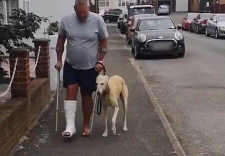 【w】骨折した男性、飼い犬が足を引きずっている事に気づき病院に連れて行くと‥
