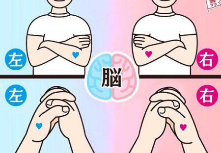 【あたってる?!】右脳派?左脳派?腕と手で簡単にわかる判定とその特性が話題に