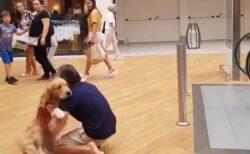 【みんな笑顔】エスカレーターが苦手な犬、抱っこしてもらう様子が可愛いすぎるw