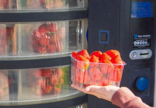 【350円】ロックダウン7か月目に突入したベルギー、乱立するいちご自販機が話題に