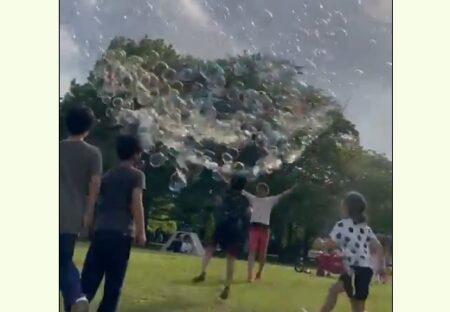 【動画】「公園にいたシャボン玉がすごい人」一瞬にしてヒーローに!