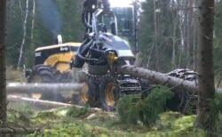 【402万回再生】大木をザクザク処理していく重機が話題に「最高に好き」「すっごい」