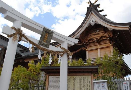【吉兆】岩國白蛇神社で野生の白蛇が何匹も発見される!