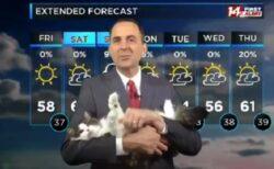 【w】ペットを抱っこしながら放送する天気予報が話題に「すっごく和む!」