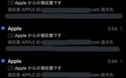 【注意】詐欺SMSに入力したら、すぐID乗っ取られ30分間で30万円以上の被害に