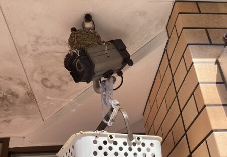 【w】「予想以上の働きを強いられる防犯カメラ」頑張り屋の防犯カメラさん達が話題に