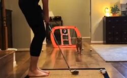 【動画】美女のボールをキャッチしまくる猫!反射神経と知能が凄すぎる!