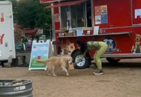 【看板犬】商品を渡しに犬が出てくるトラック!こんなお店の常連になりたいw