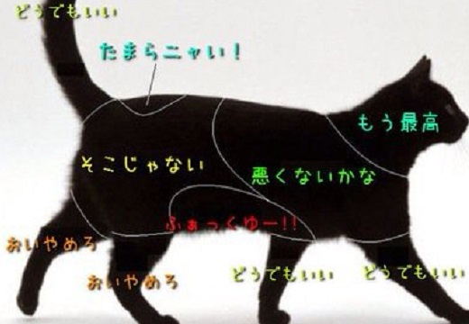 【話題】犬・ねこ・うさぎ・・どこを触ると喜ぶかが分かる図がおもしろい