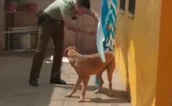 【動画】異常に気づき塀を乗り越え助けにきてくれたおまわりさん、犬が全身でお礼を伝える