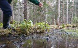 【恐怖動画】阿寒湖畔、水たまりにしか見えない底なし沼!180cm以上の棒を飲み込む