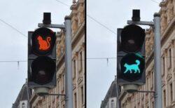 (ΦωΦ) ロシアの信号機が、かなり可愛いw